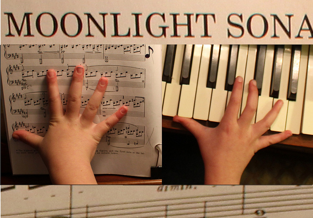 tyranny of beethoven and his moonlight sonata by woodleywonderworks